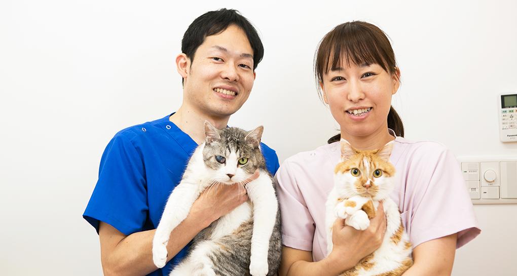 鶴ヶ島の動物病院「いとう動物病院」スタッフ